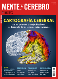 Cartografía cerebral