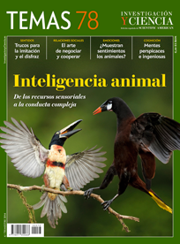 Inteligencia animal