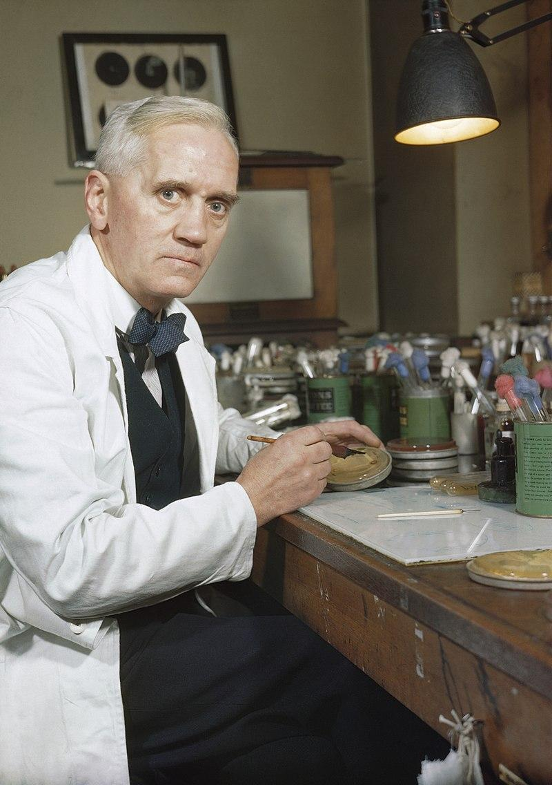 Alexander Fleming en su laboratorio del Hospital St Mary (Londres, 1943).